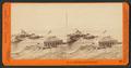 At the Cliff House, San Francisco, by Watkins, Carleton E., 1829-1916 14.png