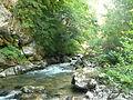 Aude gorges 2.JPG