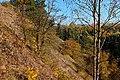 Bažantí vrch 417 m (6).jpg