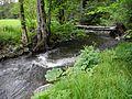 Bad Berneck - Ölschnitzbrücke - ein Baumstamm mit Brettern.JPG