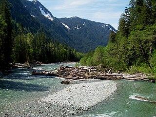 Baker River (Washington)
