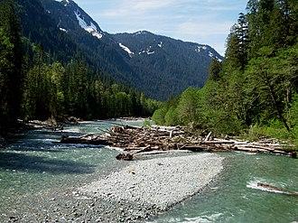 Baker River (Washington) - Baker River upstream of Baker Lake