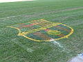 Barca logo on pitch.jpg