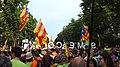 Barcelona, 14 -june 2014. Som Escola - panoramio (3).jpg