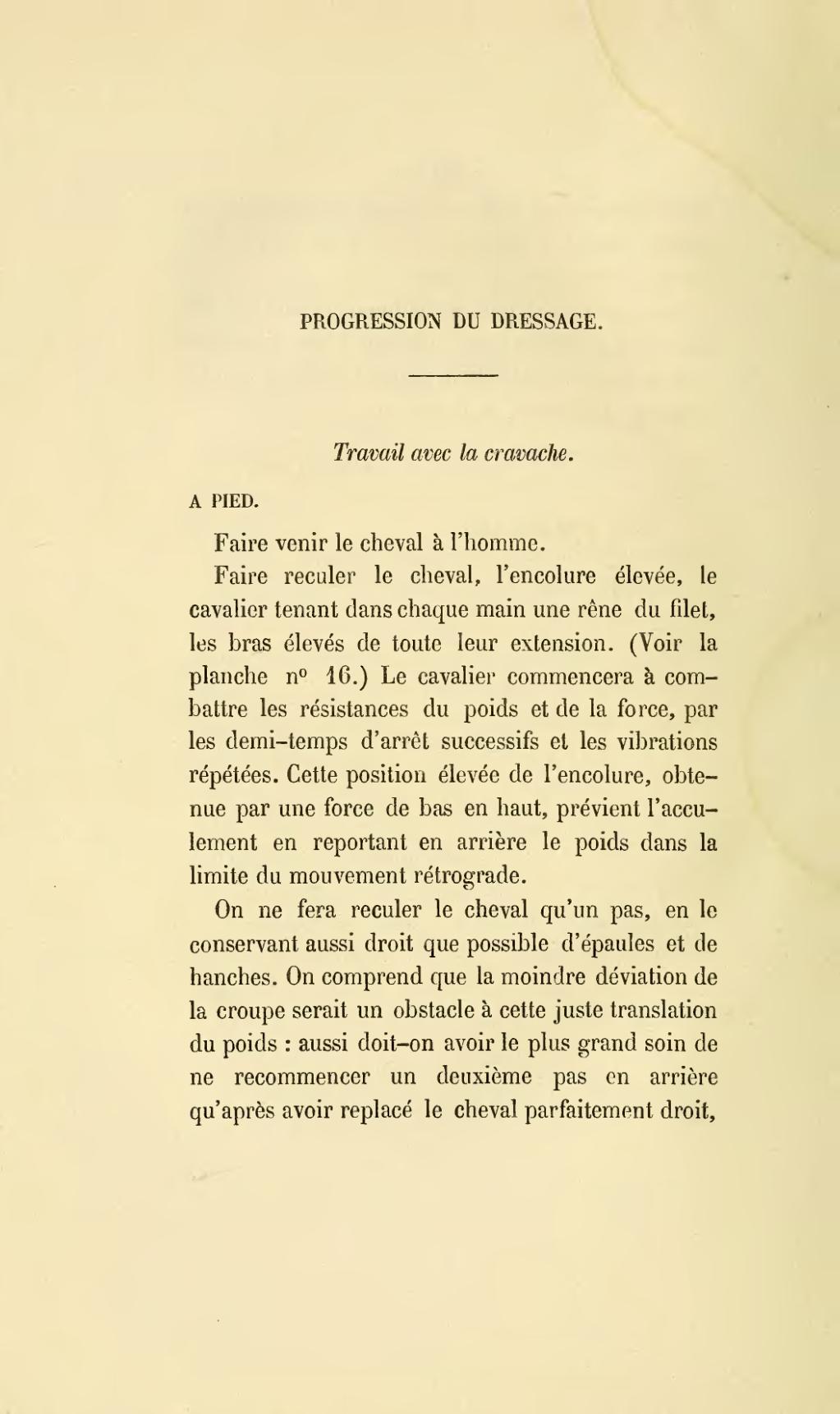 Page Baucher Methode D Equitation Basee Sur De Nouveaux