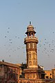 Beauty at the Wazir Khan Mosque in Lahore.jpg