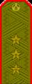 Belarus MIA—01 Colonel General rank insignia (Olive)—Sewn.png