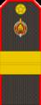 Belarus Police—14 Senior Sergeant rank insignia (Gunmetal).png
