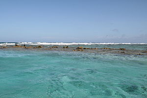 Belize Barrier Reef - Image: Belize Barrier Reef, Ambergris Caye, Belize