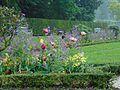Benrather Blütenpracht.jpg