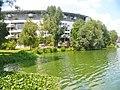 Berlin - Stralau - geo.hlipp.de - 40361.jpg