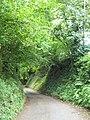 Beside Huntland Wood - geograph.org.uk - 2609498.jpg