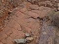 Betancuria, 35637, Las Palmas, Spain - panoramio (125).jpg