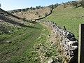 Biggin Dale - geograph.org.uk - 1231034.jpg