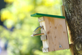 Bird in Motion Entering Bird House.png