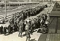 Birkenau selection on the platform.jpg
