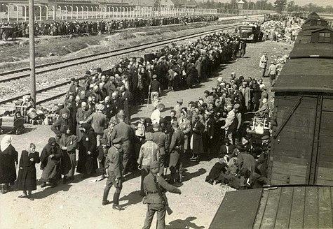 Birkenau selection on the platform