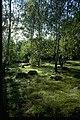 Björkö-Birka - KMB - 16000300020345.jpg