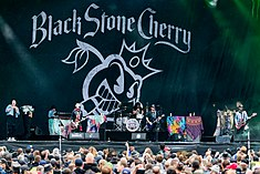 Black Stone Cherry - 2019214161330 2019-08-02 Wacken - 1653 - AK8I2475.jpg