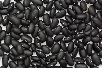 Bean chips - Image: Black Turtle Bean