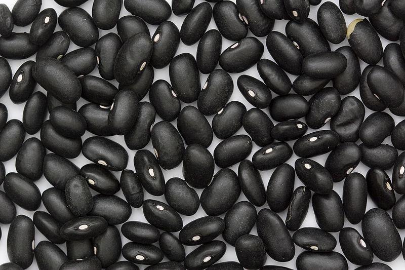 चित्र:Black Turtle Bean.jpg