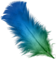 Blue and Green feather.png