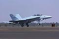 Boeing F-18 Super Hornet (5440678379).jpg