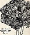 Bolgiano's spring 1965 catalog (1965) (20397325301).jpg