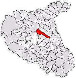 Vị trí của Bolotesti