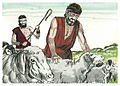 Book of Genesis Chapter 30-2 (Bible Illustrations by Sweet Media).jpg
