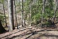 Boones Mounds, Arkansas DSC 0868 (8565749604).jpg