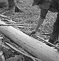 Bosbewerking, arbeiders, boomstammen, gereedschappen, Bestanddeelnr 251-7934.jpg
