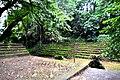 Botanic garden limbe90.jpg