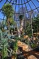 Botanischer Garten der Universität Zürich nach Umbau - 'Tiefland' 2014-03-08 14-53-14.JPG