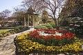 Bowral Tulip Festival - panoramio (5).jpg