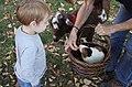 Boy with guinea pig (Unsplash).jpg