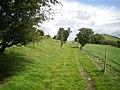 Bridleway above Dolwen farm - geograph.org.uk - 1428561.jpg