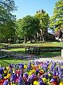 Brilliant flowers, Friary Gardens - geograph.org.uk - 2378985.jpg