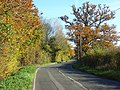Broadmoor Lane, Waltham St Lawrence - geograph.org.uk - 604746.jpg