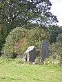 Bryngwyn Standing Stones - geograph.org.uk - 44773.jpg