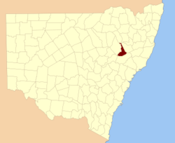 Buckland NSW