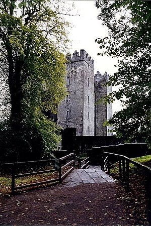 English: Bunratty Folk Park - Walkway between ...