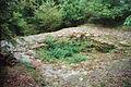 Burg Nuerings-Koenigstein Taunus-B 29-JR-2002-2002-10-02.jpg