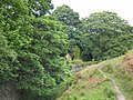 Burley Moor - geograph.org.uk - 443028.jpg