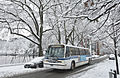 Buses in the snow (12306832216).jpg