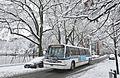Buses in the snow (12306832216).jpg