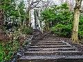 Bushy Park, Dublin -146500 (46478413401).jpg