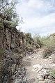 Butcher Jones Trail to Pinter's Point Loop, Tonto National Park, Saguaro Lake, Ft. McDowell, AZ - panoramio (178).jpg