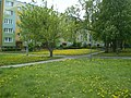Bydgoszcz ul Przyjazna - panoramio (2).jpg