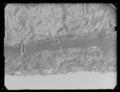 Byxor av guldlamé helt täckt av guldbroderi - Livrustkammaren - 71068.tif